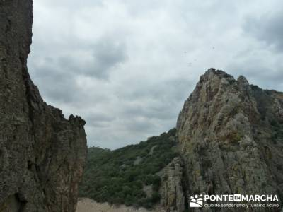 Parque Nacional Monfragüe - Reserva Natural Garganta de los Infiernos-Jerte;puente de la constituci